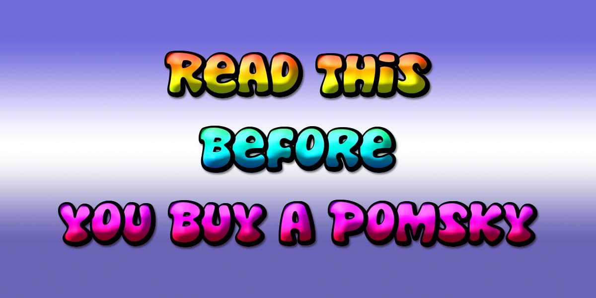 Before You Buy A Pomsky