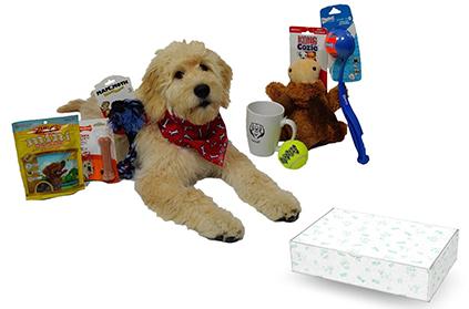 Bundled Dog Christmas Presents