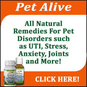 Natural Pet Remedies