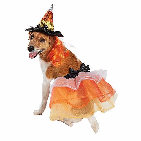 Candy Corn Hat with Tutu Dog Costume