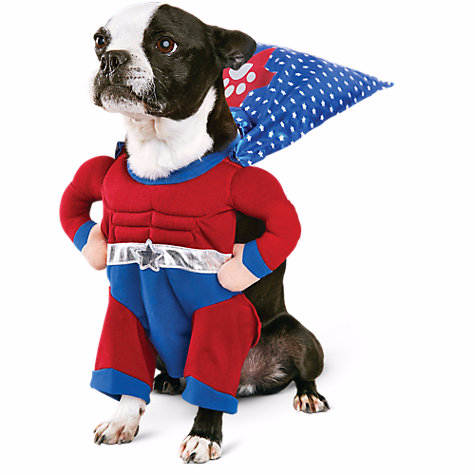 Muscle Mutt Dog Halloween Costume