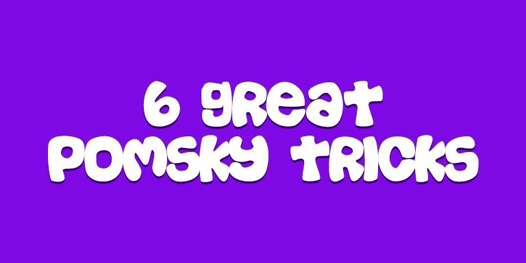 6 Tricks To Teach Your New Pomsky