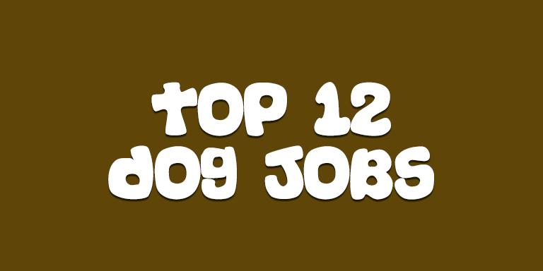 Top 12 Dog Jobs