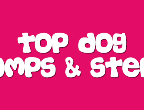 Top 5 Dog Ramps and Steps